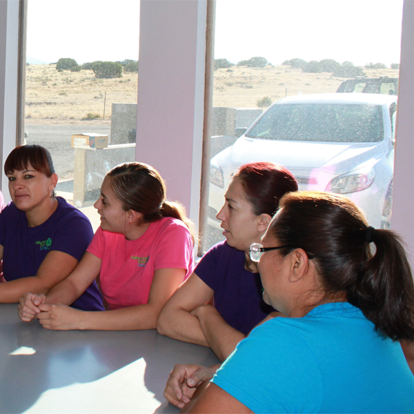 four ladies in a training session, they are wearing the company shirts that are color purple, pink and blue outside the glass window you can see a white car